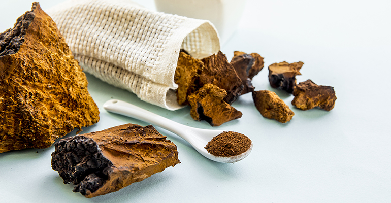 chaga-mushroom-flavor-of-the-week-sept-14 Health Benefits of Chaga Mushrooms